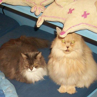 Miss Peppermint und Nandi